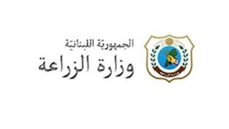 بيان صادر عن وزارة الزراعة...اليكم ماذا طلبت من البلديات بشأن الجراد